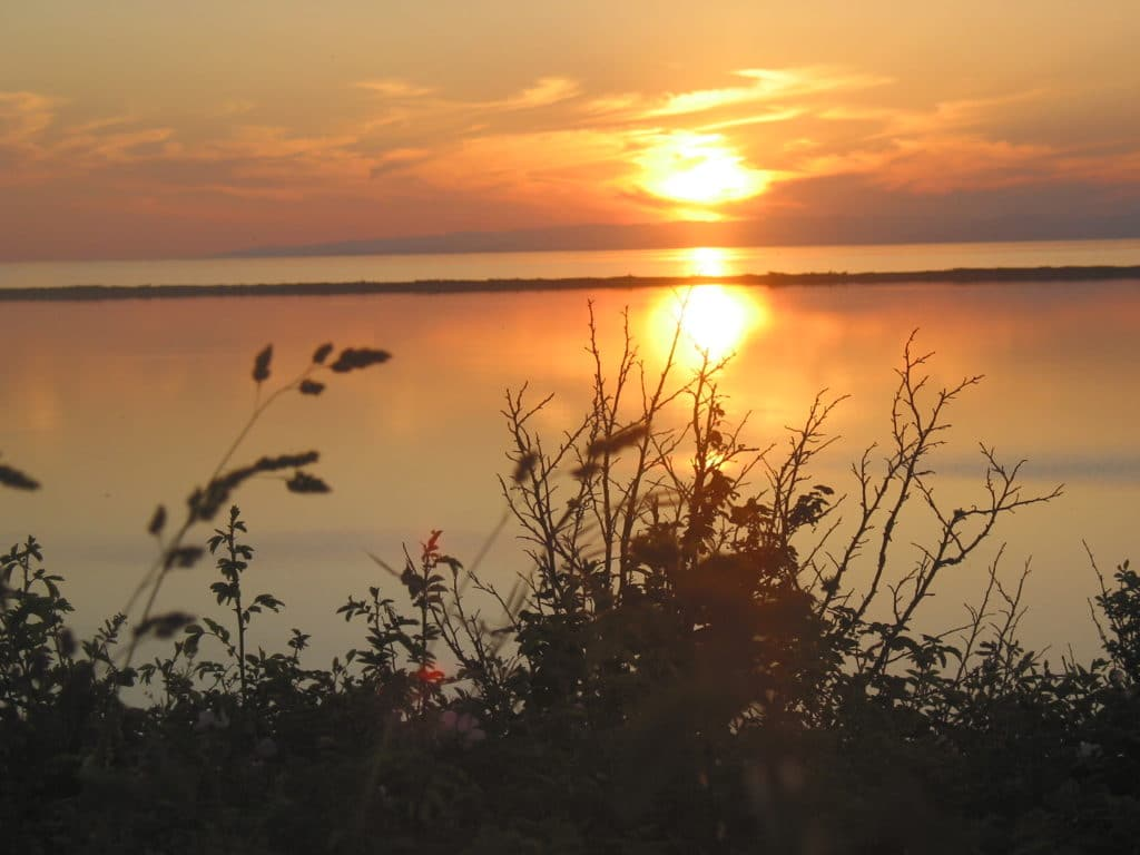 Discover the best Sequim WA lodging this summer